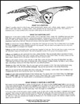 Raptor Fact Sheet